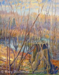 White Oak by Mary Bachman